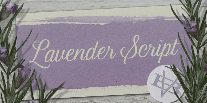 Promotional graphic for the Lavender Script typeface